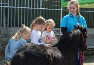 Pony knuffelen en rijden op Taste of Life event Autobedrijf Bart Ebben Malden - Nijmegen